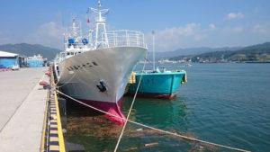 近海マグロ船に給油中